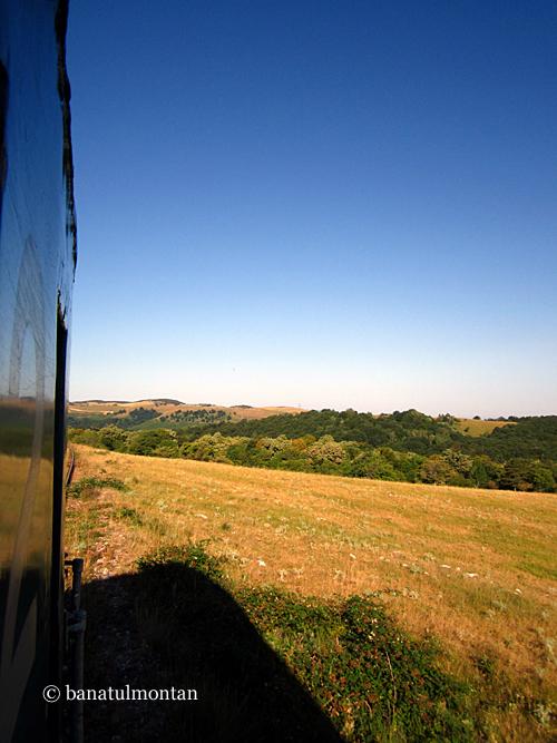 din_tren