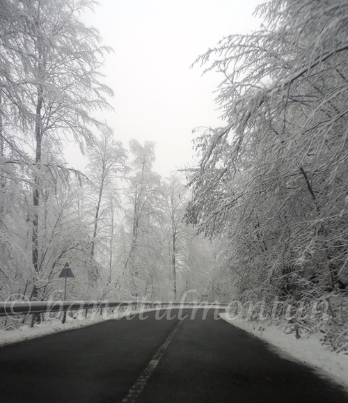 chei_iarna2