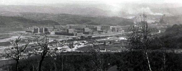 L.Barzavei3