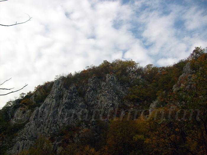 versant3