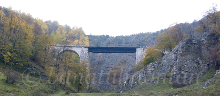 viaduct_Anina