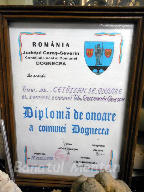 diploma07