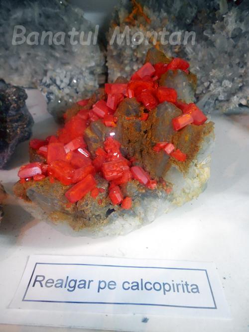 realgar_calcopirita2
